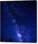 The Milky Way Over Cranberry Wilderness Canvas Print