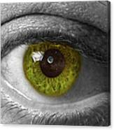 The Minds Eye Black And White Canvas Print