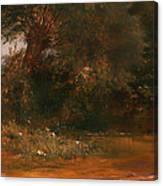 The Moor Hen's Haunt Canvas Print
