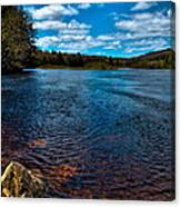 The Moose River In The Spring Canvas Print