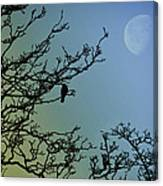 The Morning Moon Canvas Print