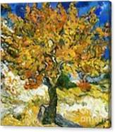 The Mulberry Tree After Van Gogh Canvas Print