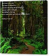 The Narrow Way Canvas Print