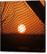 The Netted Sun Canvas Print