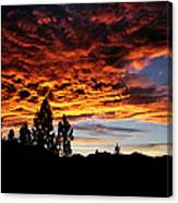 The Next Night In June Canvas Print