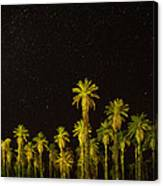 The Night Sky Over Death Valley Canvas Print