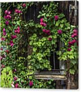 The Old Barn Window Canvas Print