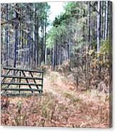 The Old Deer Gate Canvas Print