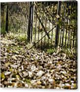 The Old Gate Canvas Print
