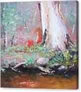 The Old Gum By The Creek Canvas Print