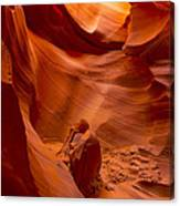 The Old Man Of The Canyons Canvas Print