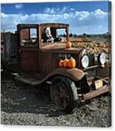 The Old Pumpkin Patch Canvas Print