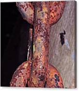 The Old Rusty Chain Canvas Print
