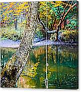 The Old Swimming Hole Canvas Print
