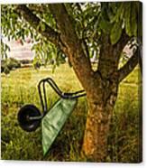 The Old Wheelbarrow Canvas Print