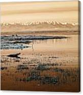 The Olympic Range Canvas Print