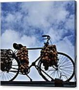 The Onion Bicycle Canvas Print