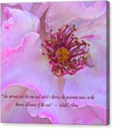 The Optimist Sees The Rose Canvas Print