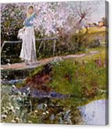 The Orchard Brook  Canvas Print