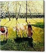 The Orchard Canvas Print
