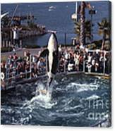 The Original Shamu Orca Sea World San Diego 1967 Canvas Print