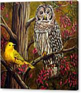 The Owl and the Canary Canvas Print