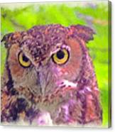 The Owl... Canvas Print