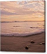 The Pace Of Topsail Canvas Print