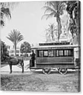 The Palm Beach Trolley Canvas Print