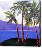 The Palms Canvas Print
