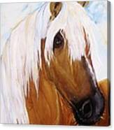 The Palomino Canvas Print