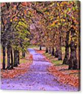 The Park In Autumn Canvas Print