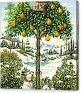 The Partridge In A Pear Tree Canvas Print