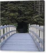 The Path The Lies Ahead Canvas Print