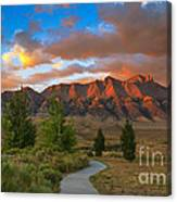 The Path To Beauty Canvas Print