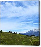 The Path To The Heart Canvas Print
