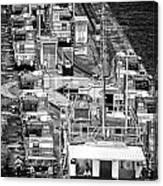 The Pecking Order Monochrome Canvas Print