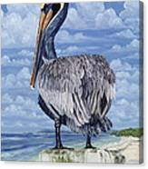 The Pelican Perch Canvas Print