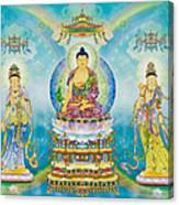 The Pharmacist Three  Canvas Print