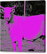 the Pink Cow Canvas Print