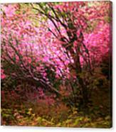 The Pink Forest Canvas Print
