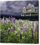 The Pink House In The Lupine Canvas Print