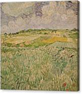The Plain At Auvers Canvas Print