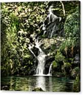 The Pond And The Forest Waterfall Canvas Print