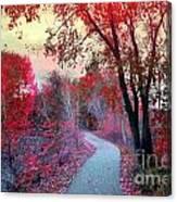The Pondering Path Canvas Print