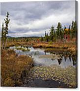 The Ponds Near Raquette Lake Canvas Print