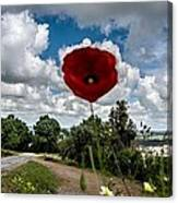 The Poppies Show You The Way Canvas Print