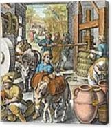 The Production Of Olive Oil, Plate 13 Canvas Print