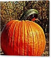 The Pumpkin Canvas Print