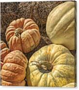The Pumpkins Of Autumn Canvas Print
